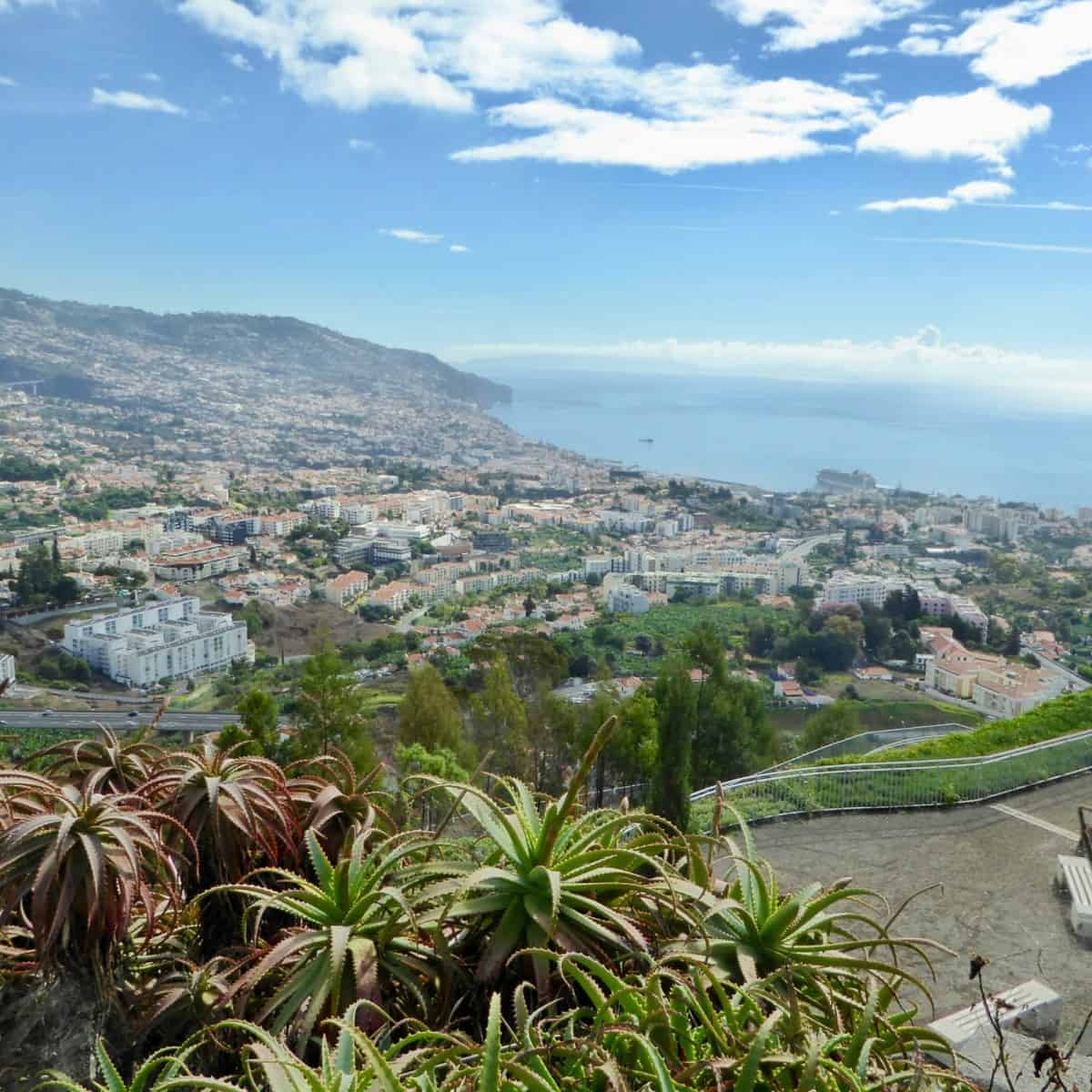 best shore excursions in Madeira for families