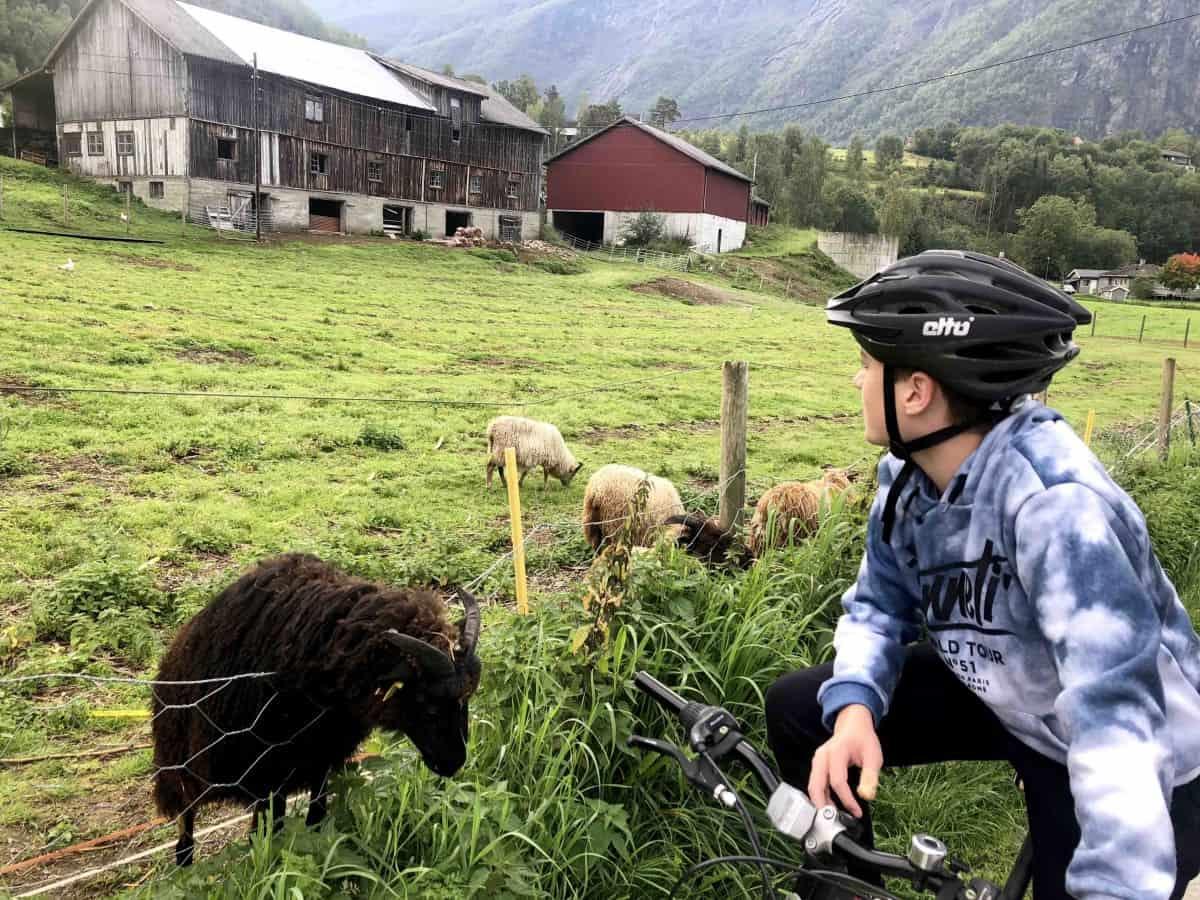 A bike ride in Skjolden