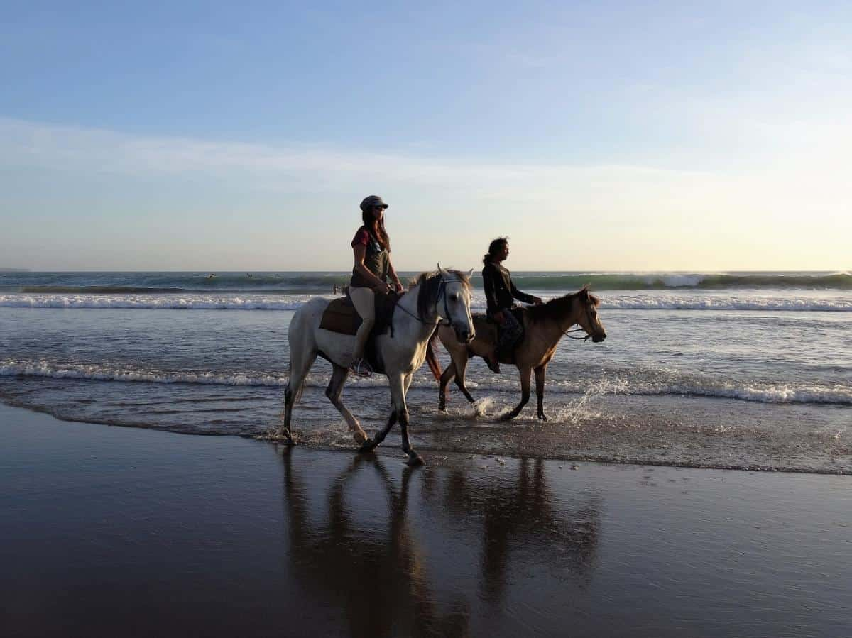 best shore excursions for kids in the med - Palma horse ride