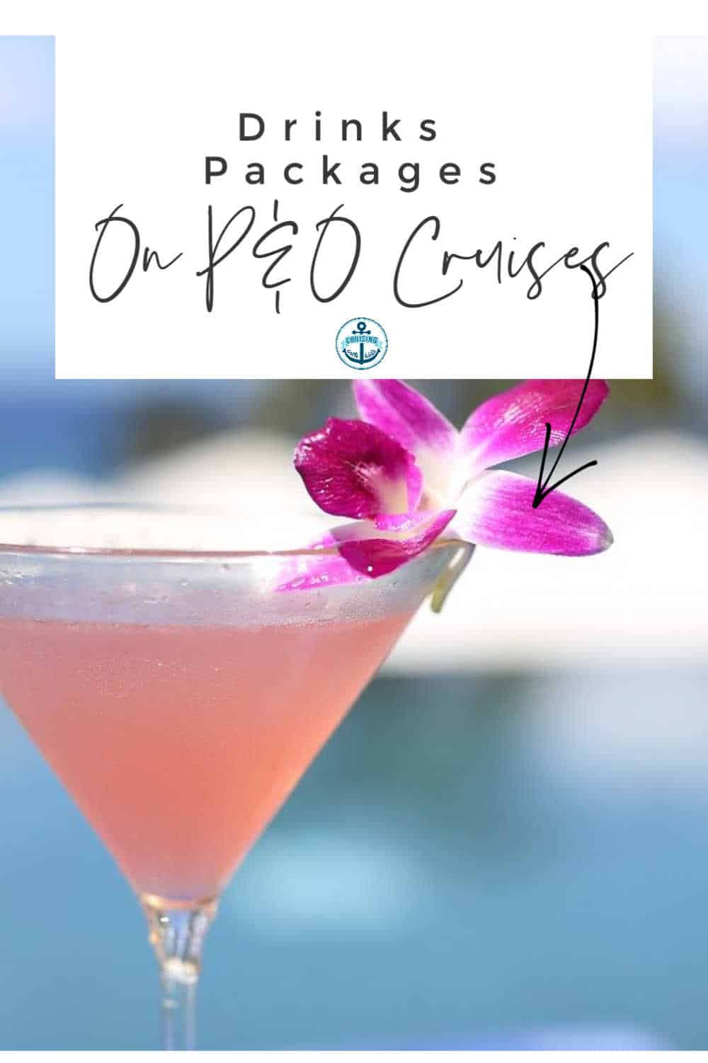 Ultimate guide for P & O Drinks packages Cruises Including Drinks menus with drinks prices